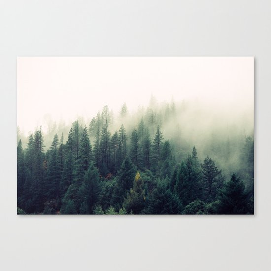 The Foggy Forest Canvas Print