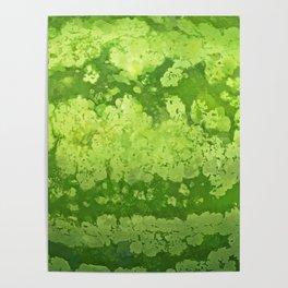 Watermelon texture Poster