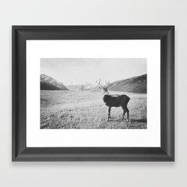 HELLO DEER III Framed Art Print