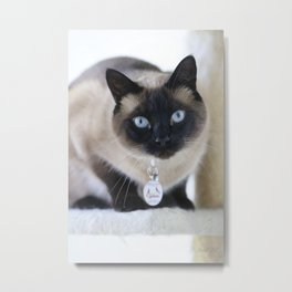 Innocent Expression Metal Print