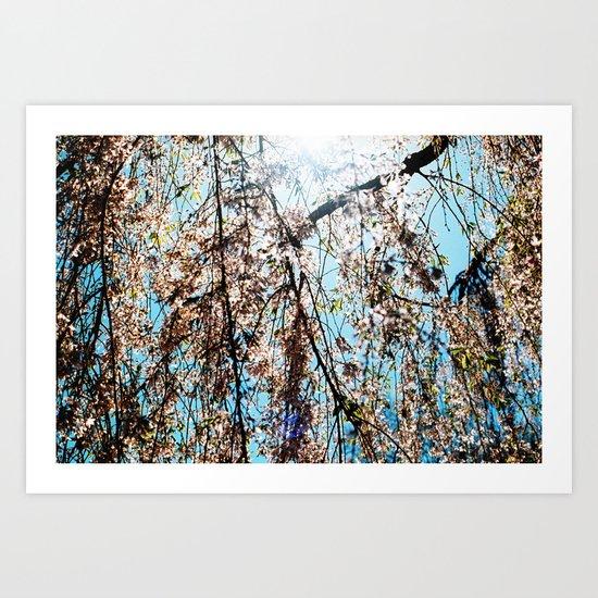 summer solstice 8 Art Print