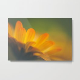 Gold Summer Metal Print