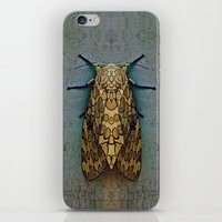 moth iPhone & iPod Skins featuring Moth by Zandonai