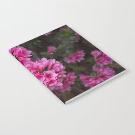 Pretty in Pink Notebook