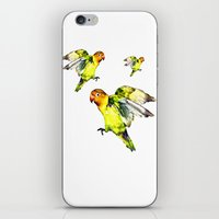 parrot iPhone & iPod Skins featuring Parrot by cmphotography