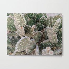 CACTUS III / Joshua Tree, California Metal Print