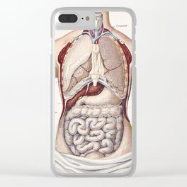 Anatomy Clear iPhone Case