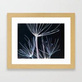 Botanical in Blue Framed Art Print