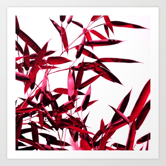 red bamboo abstract I Art Print