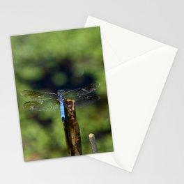 Dragonfly Life Stationery Cards