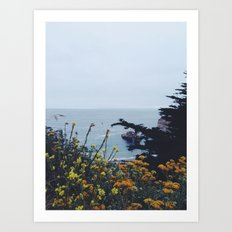 Floral Coast at Dusk Art Print