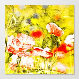 Wild poppy abstract. Canvas Print