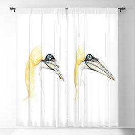 Northern gannet Blackout Curtain