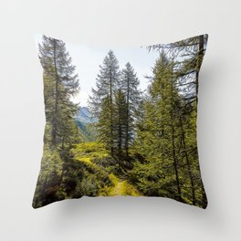 Path in the woods on the Alps in summer Throw Pillow