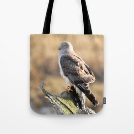 Sunlit Profile of a Northern Harrier Hawk on Driftwood Tote Bag