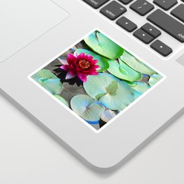 Red water lily Sticker