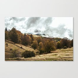 Soft undressing, sweet unraveling Canvas Print