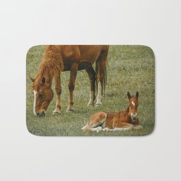 Horse And Foal Bath Mat