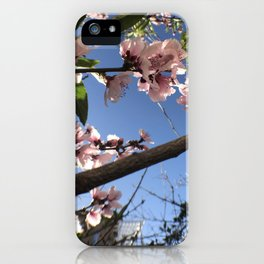 May Flower Blossom iPhone Case