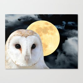 Barn Owl Bird Modern Country Art Modern Cottage Chic Art A493 Canvas Print