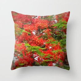 Lush Blooms DPGSS170603d Throw Pillow