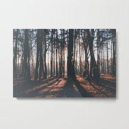 Dawn Shadows Metal Print
