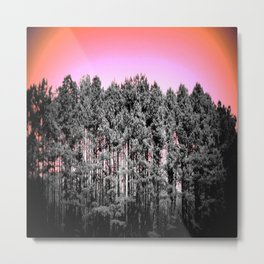 Gray Trees Peach Sky Metal Print