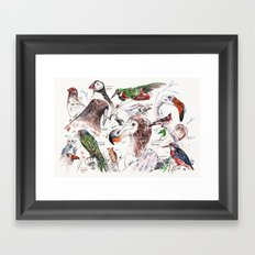 Birds and other animals Framed Art Print