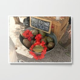 African Coconut Stand Metal Print