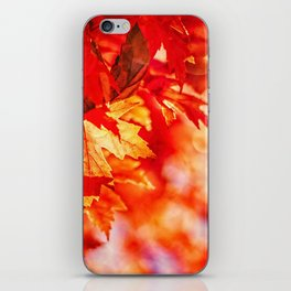 Indian Summer 7 iPhone Skin