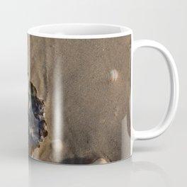 Shells in the sand 1 Coffee Mug
