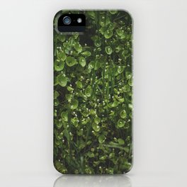 hedge iPhone Case