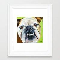 english bulldog Framed Art Prints featuring English Bulldog by Melissa Smith Pet Art
