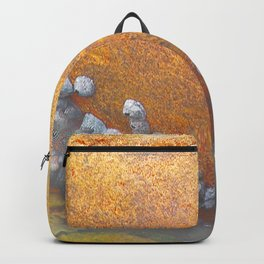 Natures Art Smiling Boulder Backpack