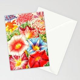 Colorful Japanese Morning Glory Flowers Stationery Cards