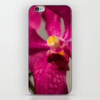 orchid iPhone & iPod Skins featuring Orchid by Michelle McConnell