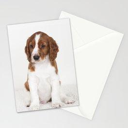 Wallovas Bon Iver Stationery Cards