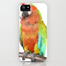 Vector Style Harlequin Macaw On A Perch iPhone Case