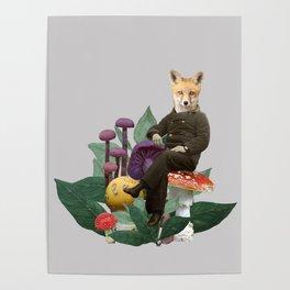 Amanita muscaria Poster