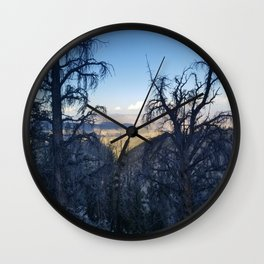 Ancient Bristlecone Pine Forest #1 Wall Clock