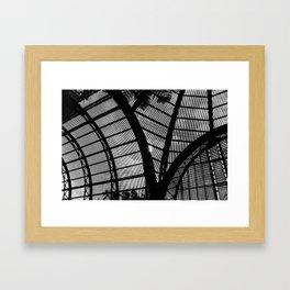 Botanical Garden Framed Art Print