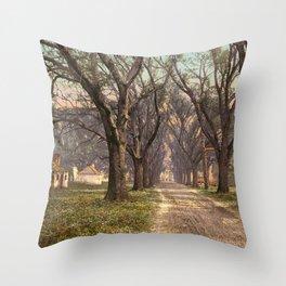 The Hermitage, Savannah Throw Pillow