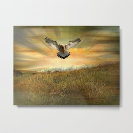 Falcon's Grasslands Metal Print