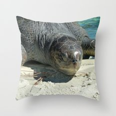 Turtle Ashore Throw Pillow