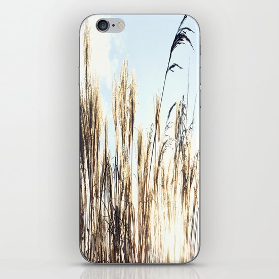 sun setting on reeds iPhone & iPod Skin