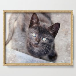 Sweet looking black kitty with big, beautiful eyes. Serving Tray