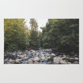 a waterfalls view Rug