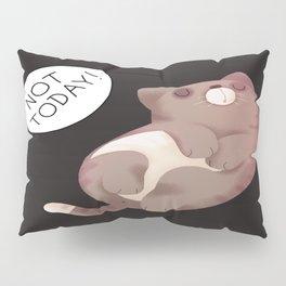 The Lazy Cat Pillow Sham