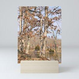 Hidden Lake Shore - Shelbyville, IL Mini Art Print