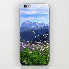 Alpine Meadow iPhone & iPod Skin